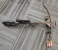 Ten Point Crossbow